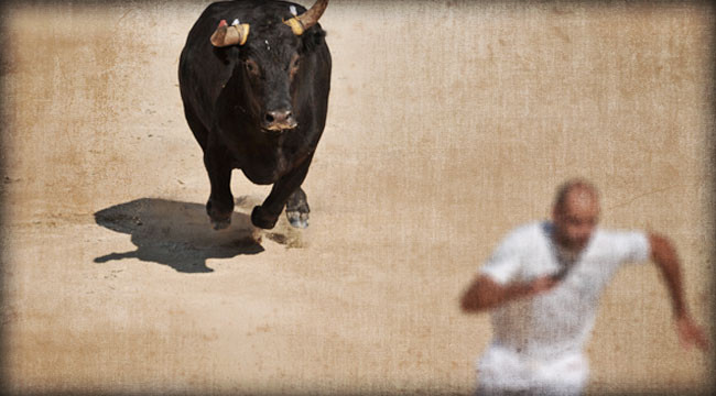 Ma and Pa Run With the Bulls