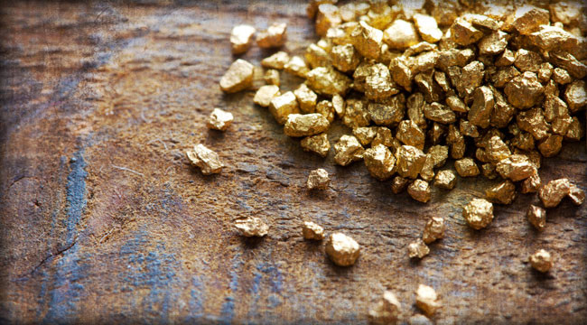 2 Miner Developments in the Big Gold Sector