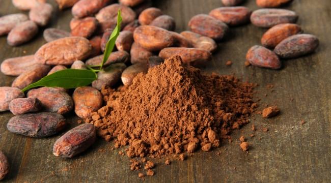 Cuckoo for Cocoa Profits