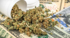You Can't Deny This Chart – Reefer Madness is Sweeping the Nation