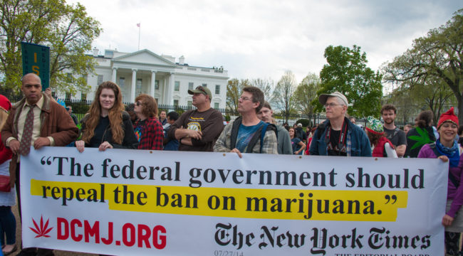 The People Want Pot —The States Want Profits