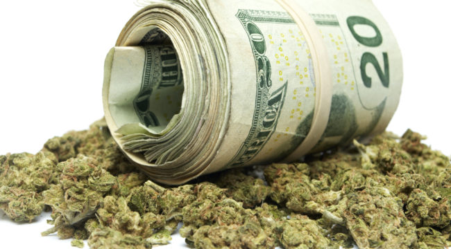 Profit From Piles of Marijuana Cash