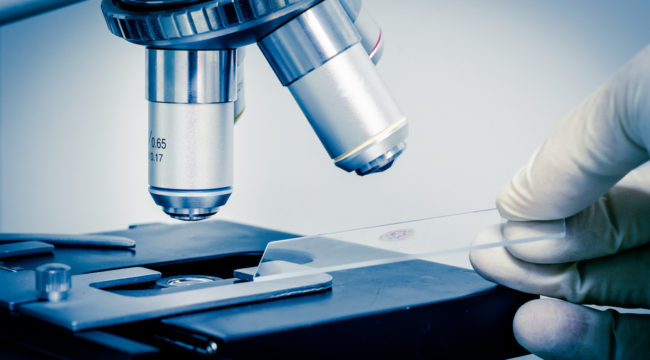 The New Biotech Boom Begins NOW