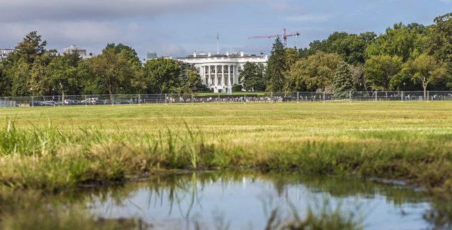 The Swamp Attacks Trump Tax Plan
