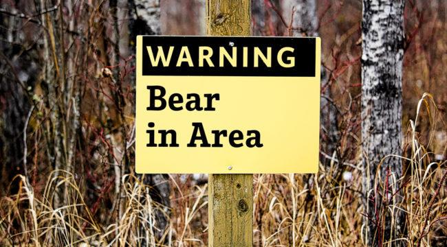3 Ways to Beat a September Bear Raid