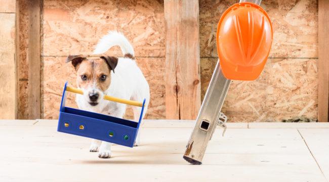 Restoration Hardware -- The Furniture Beast Awakens