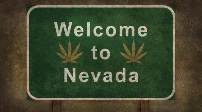 Green and Growing in Las Vegas