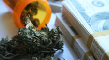 POT ALERT: Can You Afford to Miss These Gains?