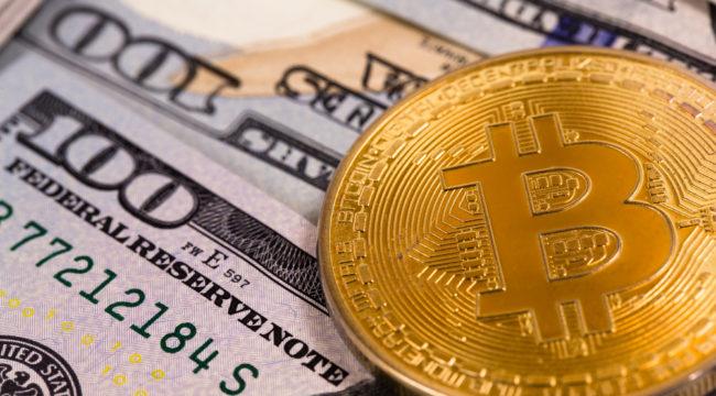 Crypto Alert: Mastering the Volatility