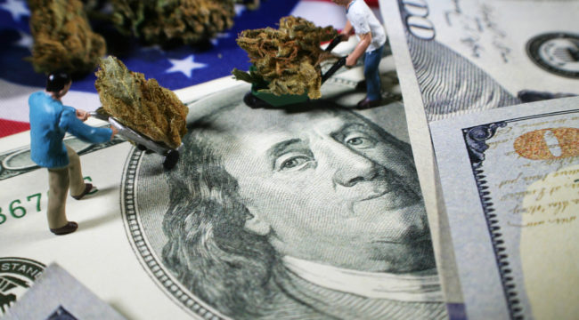 POT ALERT — Buffer Your Gains From the D.C. Swamp