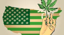 Jobs and Taxes: Trump's Master Marijuana Plan