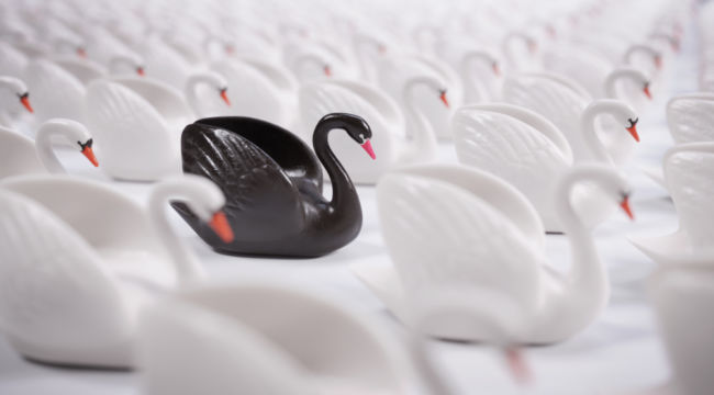 Markets and Black Swans
