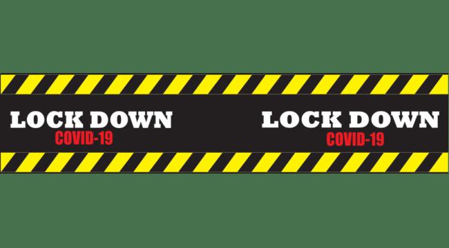 Lockdowns Worked!